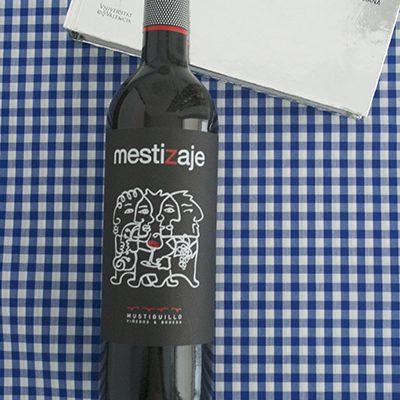 MESTIZAJE2
