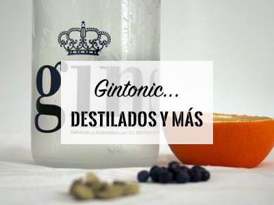 Destilados GIN